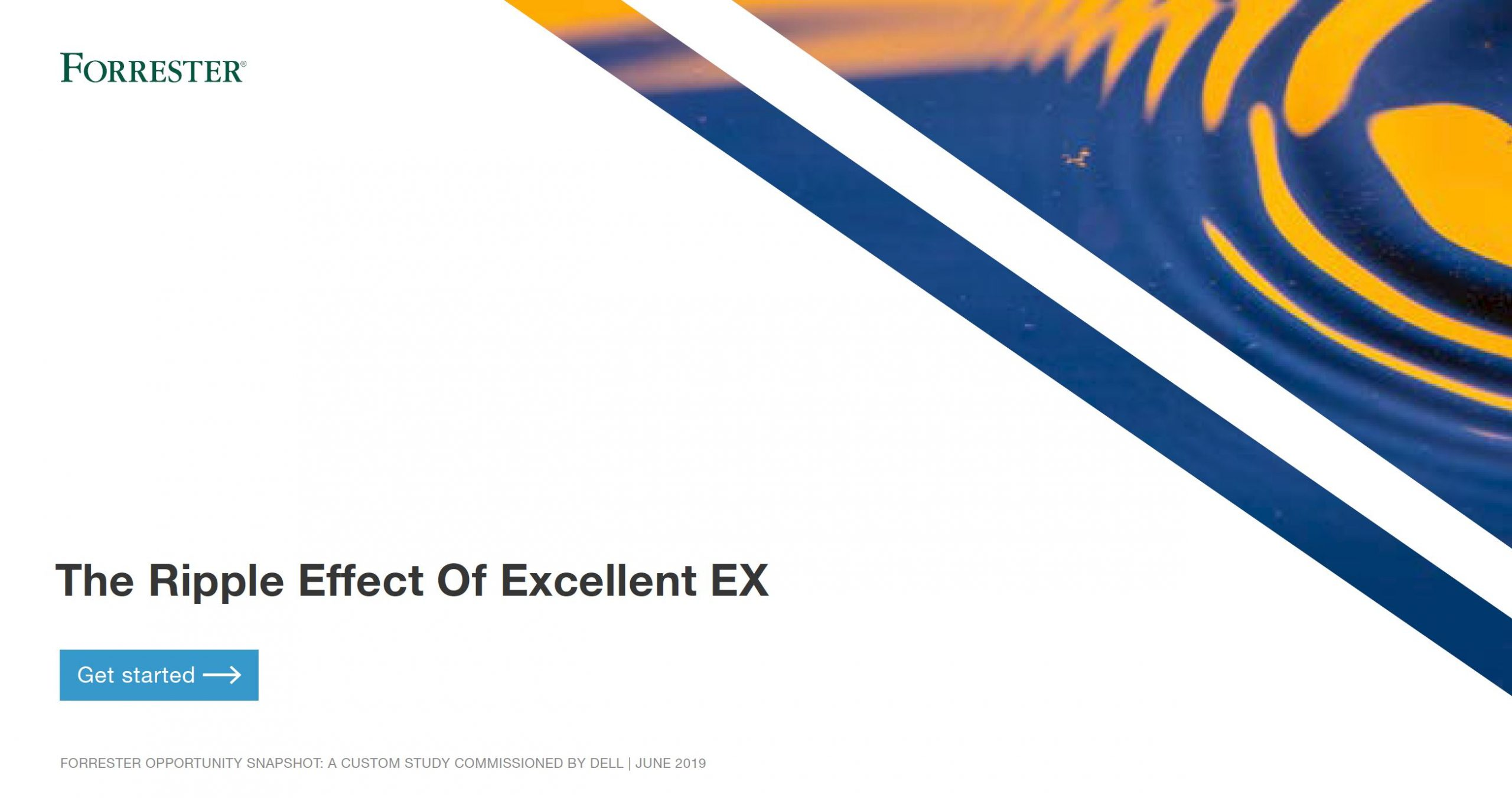 , , The Ripple Effect Of Excellent EX